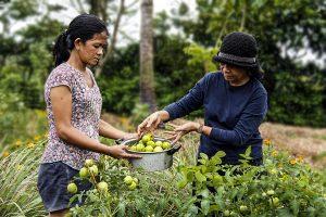 DAR Bicol Region nagkaloob ng pinakamataas na suportang serbisyo sa taong 2020
