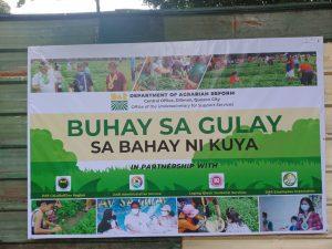 DAR ilulunsad ang ikatlong Buhay sa Gulay project sa Caloocan City