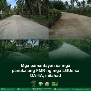 Mga pamantayan sa mga panukalang FMR ng mga LGUs sa DA-4A, inilahad